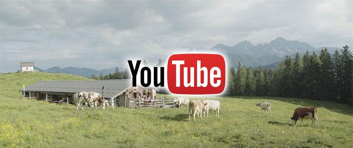 Fam Zehentner auf Youtube
